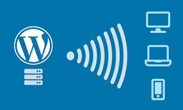 WordPress-Development-CMS-Nexuslink